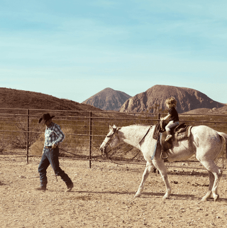 Two Days in Terlingua and Big Bend National Park - Horses