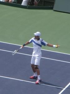 Novak Djokovic (W)