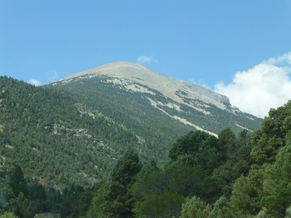 Wheeler Peak is over 13,000 feet in elevation with the top being above the tree line.