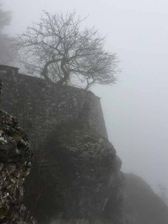Misty picture from the parapet