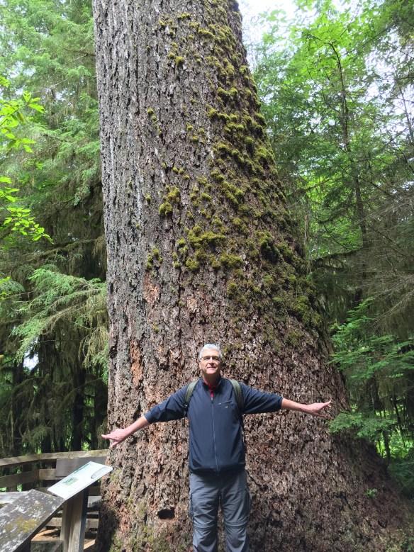 John does his usual big tree, little John