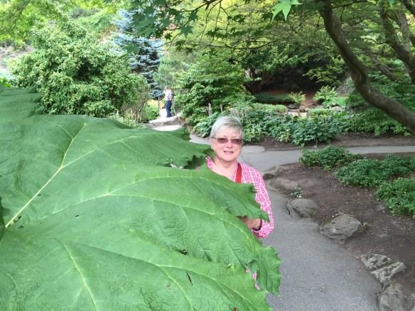 Mary hiding behind a giant leaf