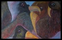 nr 5 2013 Birds