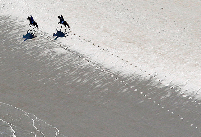 Horses cast long shadows as they gallop along Hampton Beach on a warm spring day.