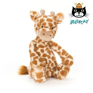 Jellycat Bashful Giraffe Mary Shortle