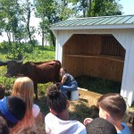 Mary Land Farm 2017 milking with kids