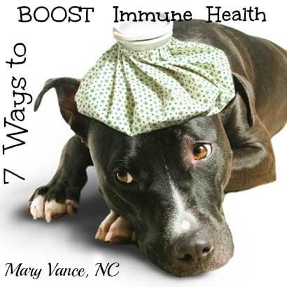 7 Ways to Boost Immune Health