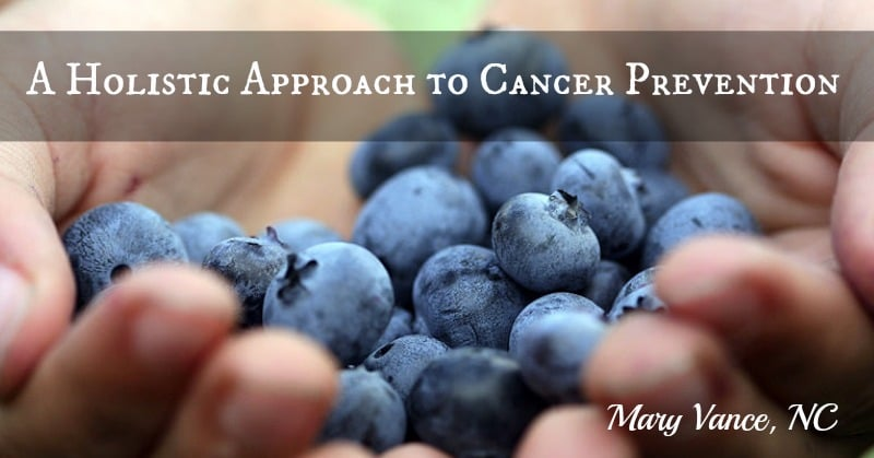 A Holistic Approach to Cancer Prevention