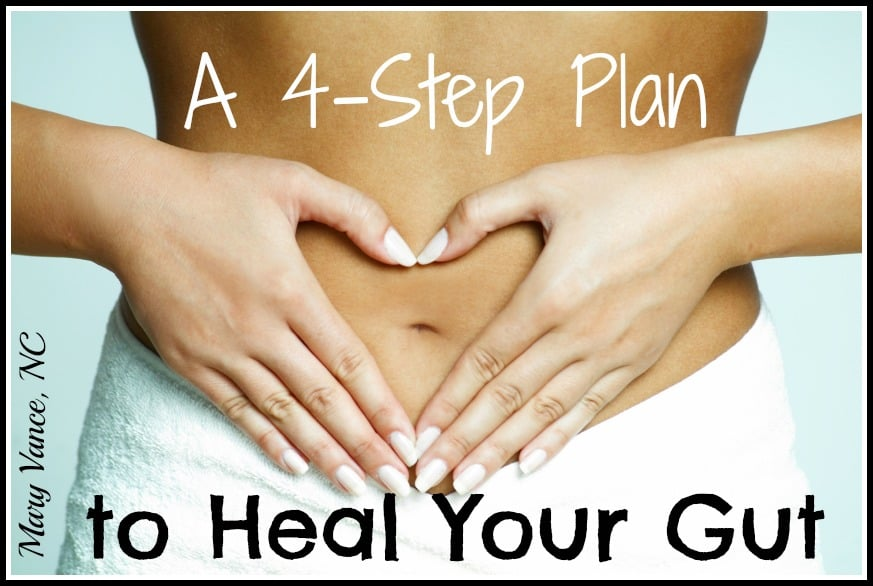 A 4 Step Plan to Heal Your Gut