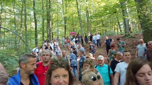 Waldspaziergang für den Frieden