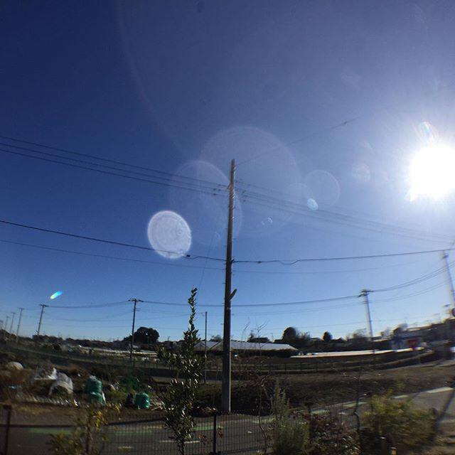 今日も良い天気#masasfactory