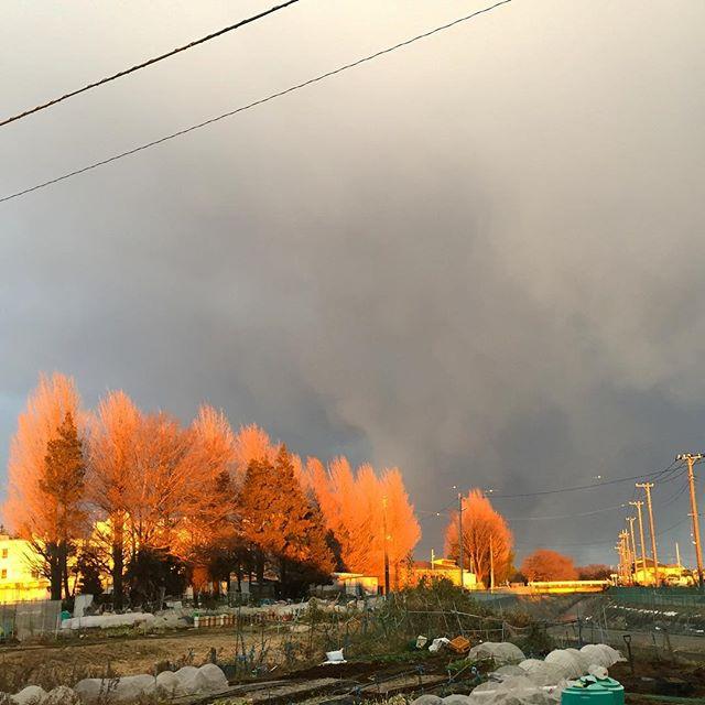何故か頭上だけ黒い雲。 隙間から夕陽が差し込む。