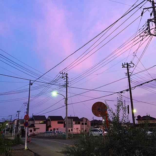 ほんのりピンク色の世界。 今日の営業も、まもなく終了。
