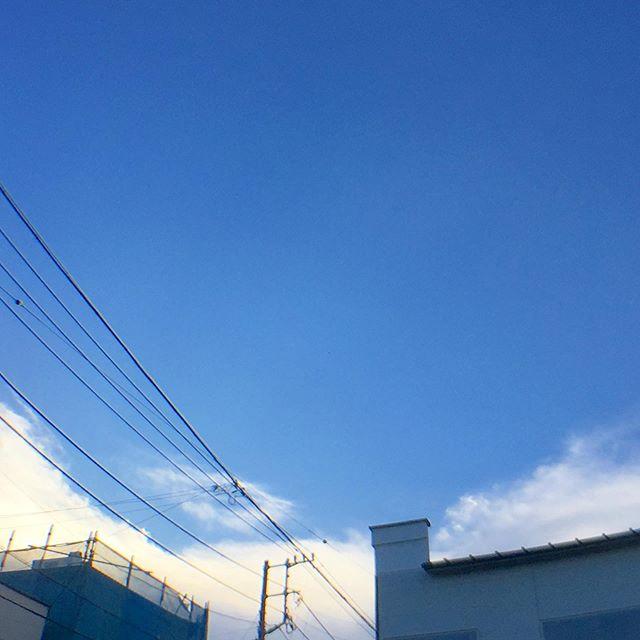 激しい夕立は、ここには来ないみたい。  良い天気すぎ。