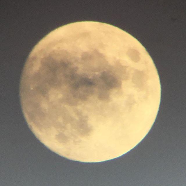 雲間の月 。