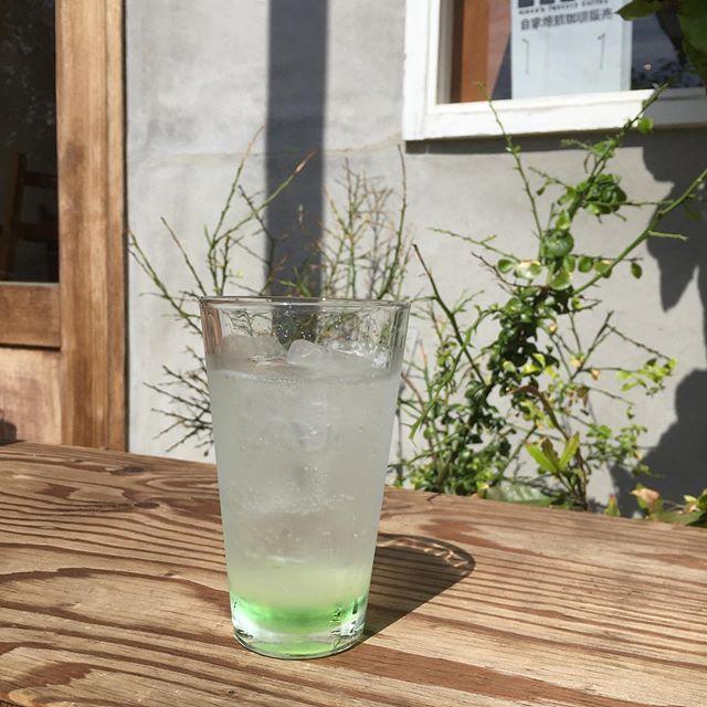 今日はちゃんとしています 。  cucumber gin fizz まだ夏の味がします。
