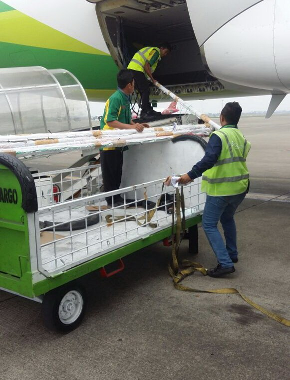 Cargo termurah di Jakarta
