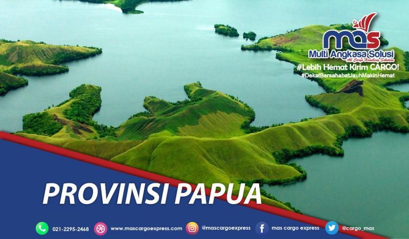 pengiriman barang Jakarta Papua cepat