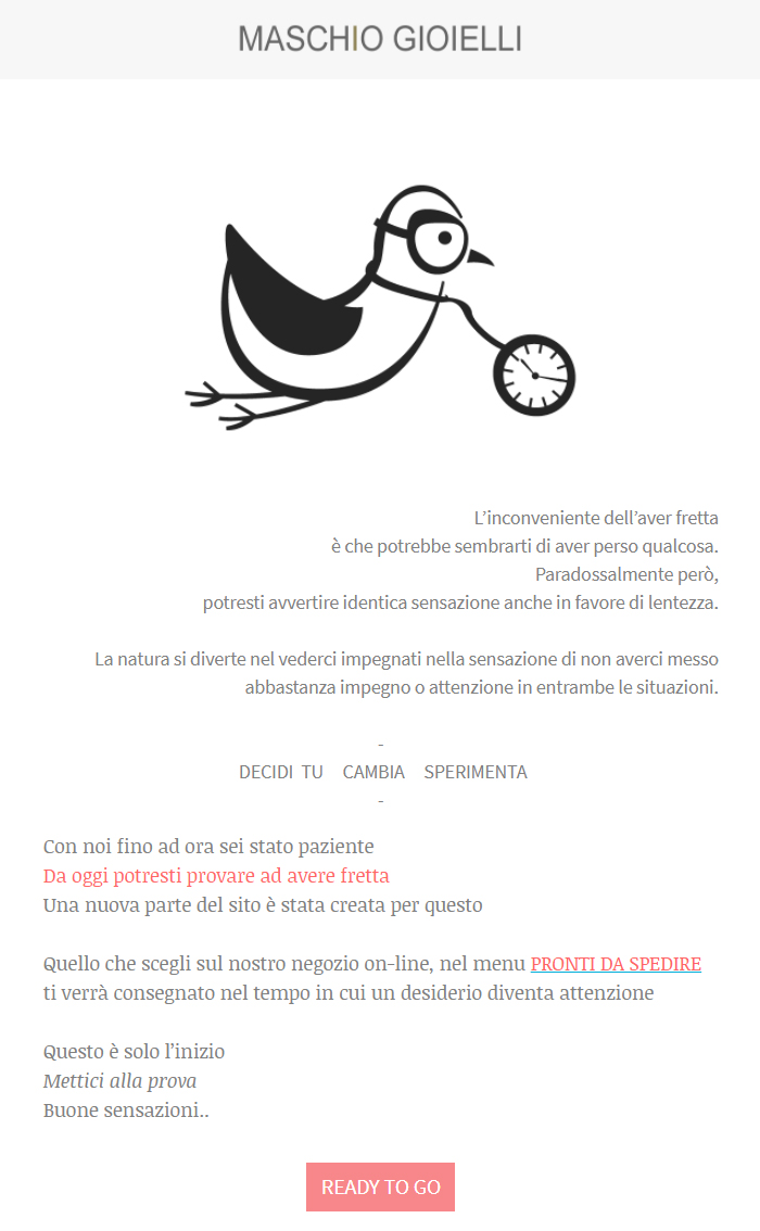 Newsletter_Pigeon-do-it-bet