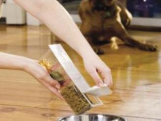 Diferentes Comidas para la Dieta de tu Perro