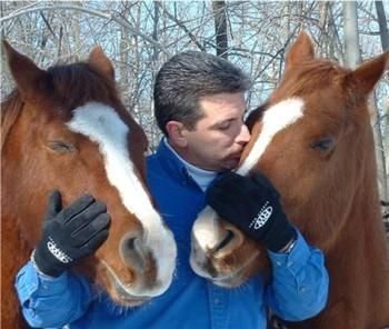 foto de como cuidar un caballo