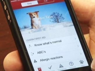 Foto de Primeros Auxilios para Mascotas para Android y para iOS