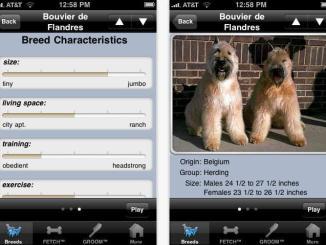 Apps para dueños de mascotas