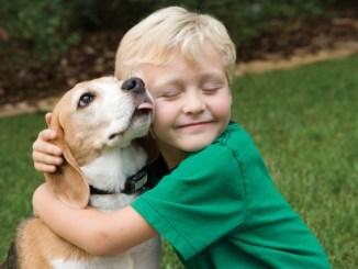 Elegir el perro cachorro que acompañará a nuestros hijos