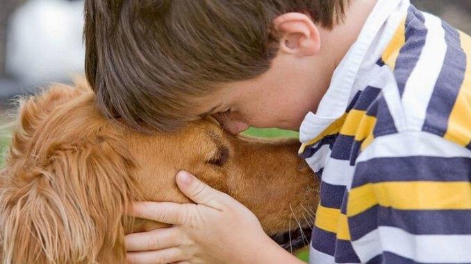 Argentina es el país con más mascotas por habitante