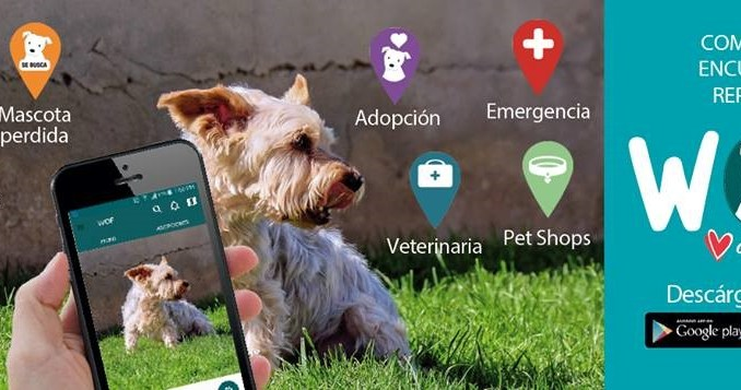 WOF: La aplicación de ayuda para nuestros animales. Extravíos, robos, abandonos o emergencias.