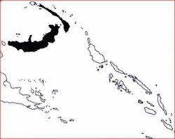 Distribution cockatoo ophthalmic