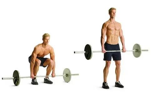 rippetoe workout deadlift