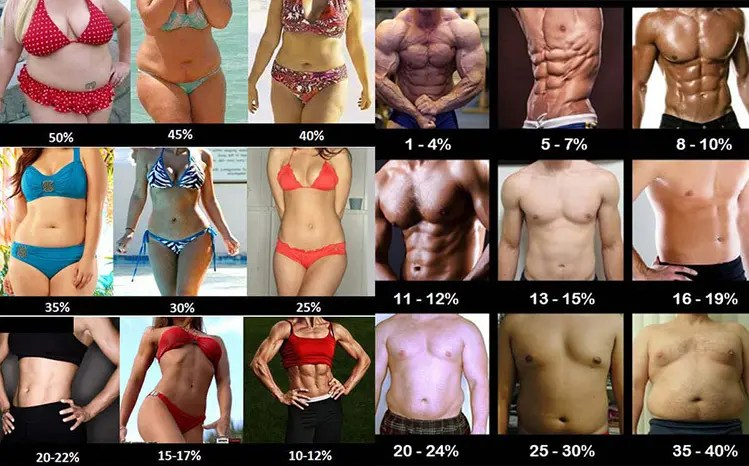 how to get abs bodyfat percentages