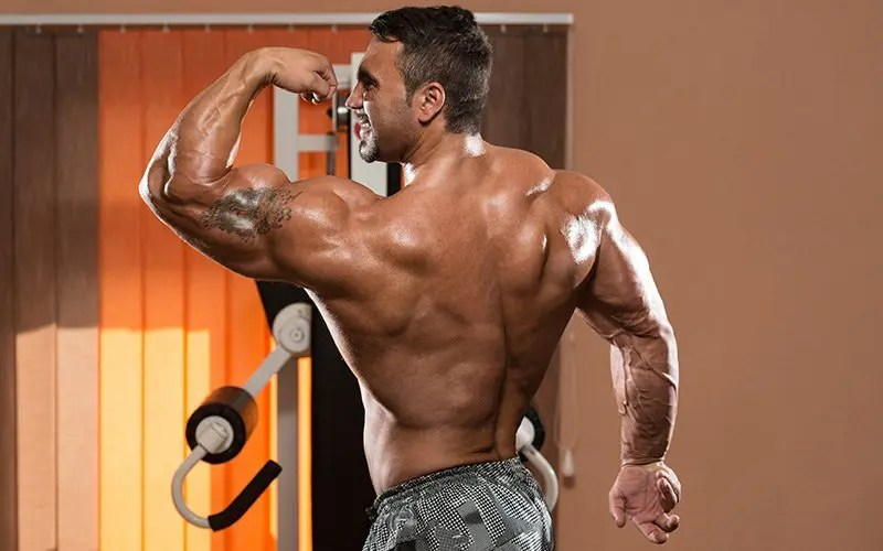 sarms guide what are sarms ostarine cardarine ligandrol