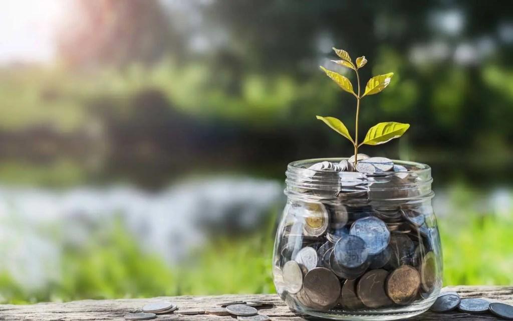fundamentals of wealth masculine development