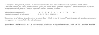 clicca sull'immagine per leggere un estratto da Visita Guidata di Elisa Bollazzi