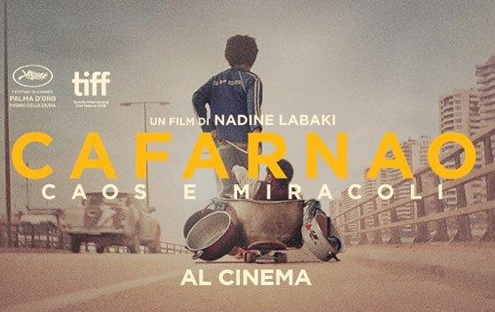 cafarnao banner web