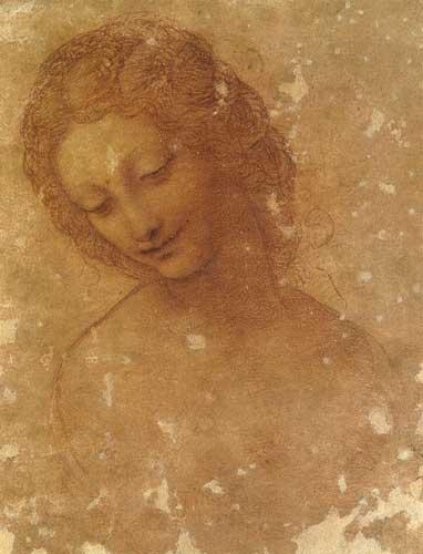 Leonardo da Vinci (1452-1519), Studio per la testa di Leda, 1504-1506 ca. Pietra rossa naturale su carta preparata rosso-rosata, mm 200 x 157. Milano, Castello Sforzesco, Civico Gabinetto dei Disegni, inv. 3805bis 1354