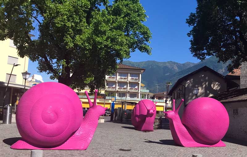 Le chiocciole nei pressi del Collegio Papio - Photo by MaSeDomani