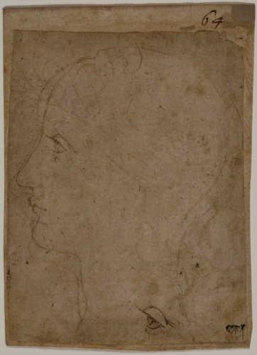 Leonardo da Vinci (Vinci, 1452 – Amboise, 1519), Testa di una giovane donna di profilo verso sinistra e disegno di un occhio. Penna e due tipi di inchiostro su carta ingiallita, incollata su carta di supporto, c. 1490 – 1492. © Milano, Veneranda Biblioteca Ambrosiana, Cod. F 274 Inf. 14
