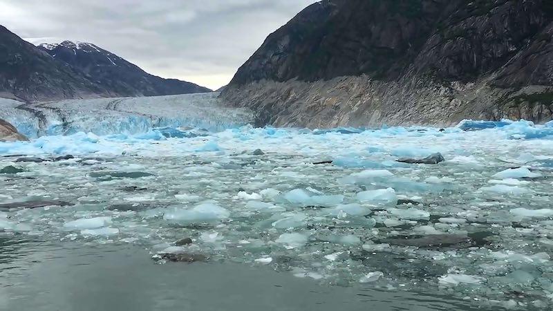 Una scena del corto Icemeltland Park. Photo: courtesy of Locarno 2020