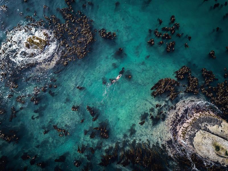 My-Octopus-Teacher_craig-drone_Tom-Foster_ph-Netflix