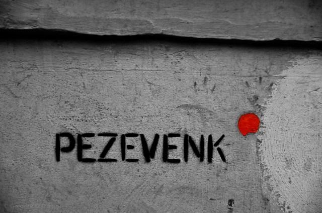 pezevenk