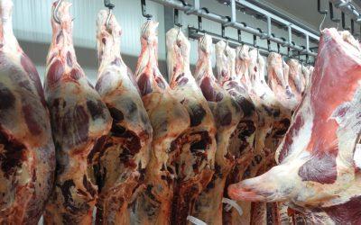 Zvýšený zájem ohovězí maso vČíně