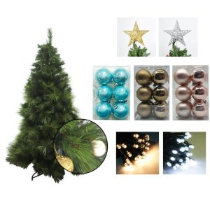 Abaco Giant Needle Pine Chrismtas Tree Pastel Bundle