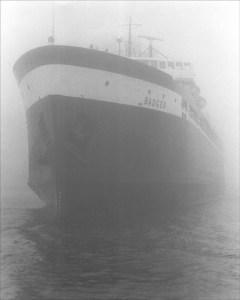 Badger in Fog '91
