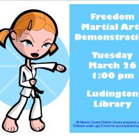 Freedom Martial Arts