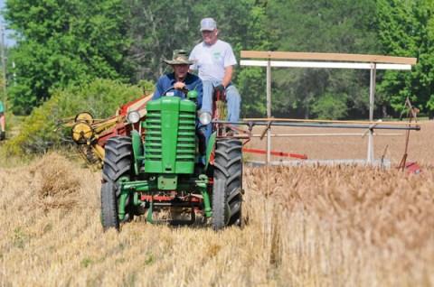 old engine club hay cut002