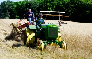The old engine club chooses a field each year to cut grain for demonstrations during its show.