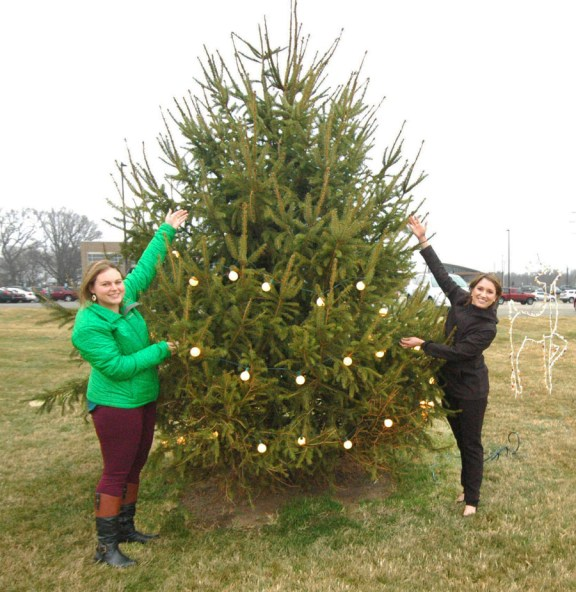 Kaley Petersen, right, and Rose Jensen show how the number of lights has grown in just the first week of the annual Lights and Love Tree at Spectrum Health Ludington Hospital. In the second picture they demonstrate their goal of filling the tree with lights honoring and remembering loved ones.